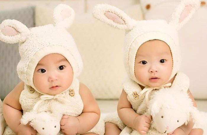 Jenis Macam Bayi Kembar