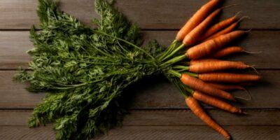 Kandungan wortel
