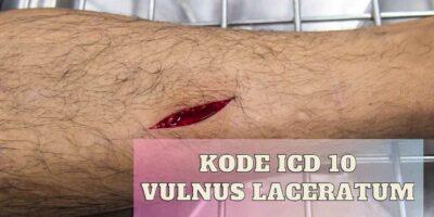 kode icd 10 vulnus laceratum