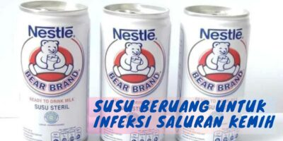 susu beruang untuk infeksi saluran kencing